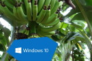 Windows 10 -Bananensoftware reift beim Kunden