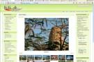Fotos im Web