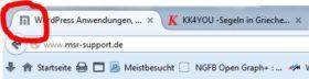 Website-Icon als Favicon (Browser-Tab)