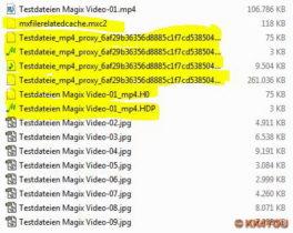 Magixdateien zwischen den eigentlichen Bild/Video Dateien