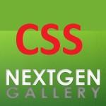 NextGen -Stylesheet Probleme beim Update auf Version 2
