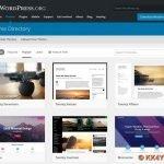Erfahrungsbericht -Design einer Webseite gestalten